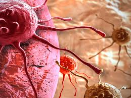 cancro-vs-tumor-maligno